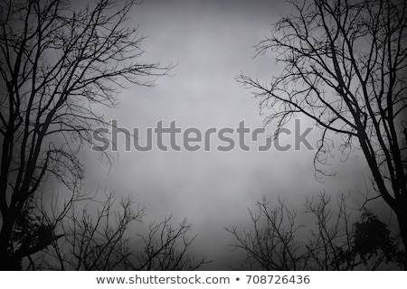 Halloween Creepy Tree Background Stock photo © Lightsource