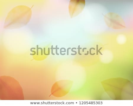abstract autumn poster with shining sun eps 10 stock photo © beholdereye