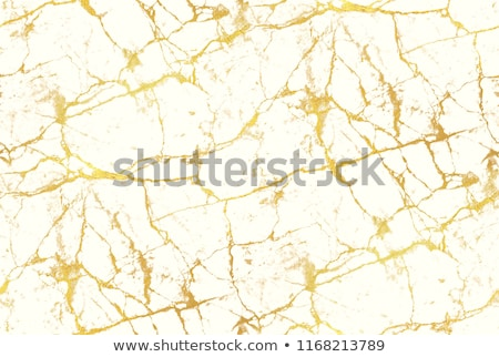 Renkli kırık soyut hatları iş dizayn Stok fotoğraf © olgaaltunina