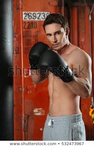 小さな 強い ボクサー ポーズ ジム 写真 ストックフォト © deandrobot