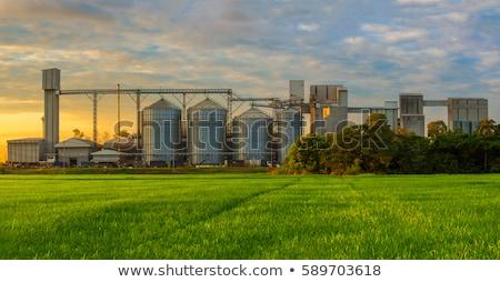 Niebieski rolniczy puszka niebo żywności pracy Zdjęcia stock © Klinker