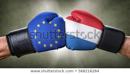 A boxing match between the European Union and the Netherlands Stock photo © Zerbor