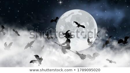 Ghost · луна · пространстве · белый · страхом · Bat - Сток-фото © sarts