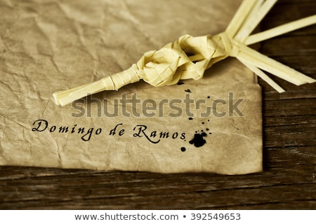 text Domingo de Ramos, Palm Sunday in Spanish Stock photo © nito