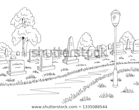 park road and trees graphic black and white landscape sketch Stock photo © Margolana