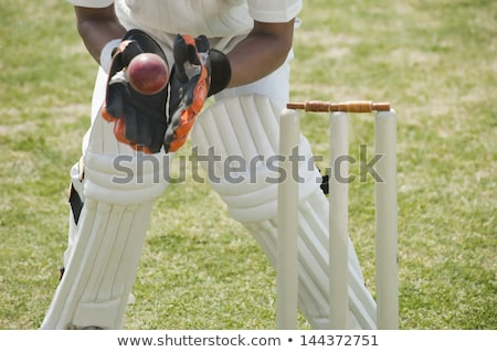 Alacsony részleg férfi játszik krikett mező Stock fotó © wavebreak_media