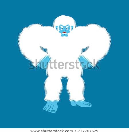 Mérges gonosz hóember agresszív vektor férfi Stock fotó © popaukropa