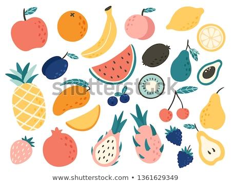 Stock fotó: Vektor · gyümölcs · illusztráció · alma · bogyó · narancs