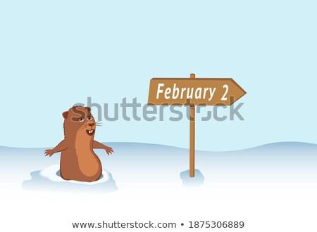 2 February Calendar  happy groundhog day Stock photo © Olena
