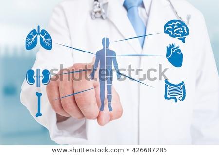 内部 薬 医療 錠剤 シリンジ 3dのレンダリング ストックフォト © tashatuvango