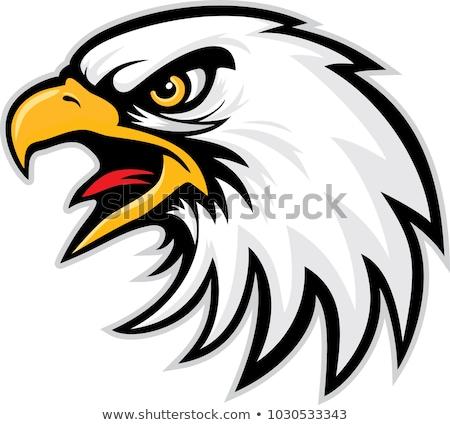 Águia · cabeça · logotipo · vetor · coroa · laurel - foto stock © krisdog