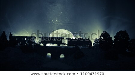 Night Train on Iron Bridge Stock photo © 5xinc