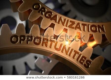 organization opportunities on the golden cog gears stock photo © tashatuvango