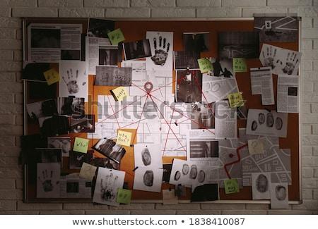 Politie onderzoek boord structuur ingesteld oplossen Stockfoto © romvo