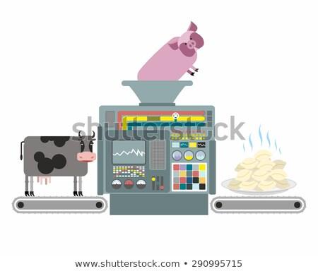Production porc boeuf appareil cuisson Photo stock © popaukropa