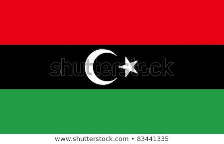 Libya flag, vector illustration Stock photo © butenkow
