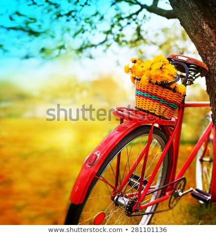 Alan çiçekler araba işlemek Stok fotoğraf © FAphoto