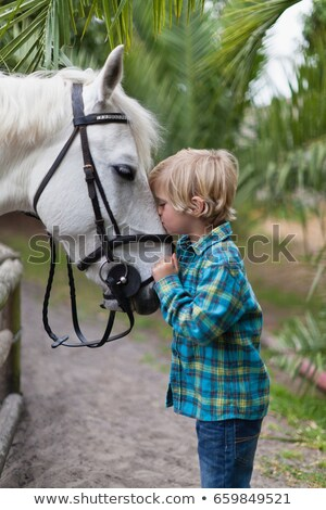 boy kissing horse in yard stock photo © is2