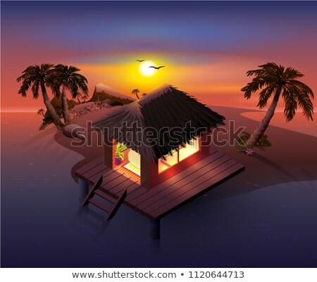 Night tropical island. Palm trees and shack on beach Stock photo © orensila