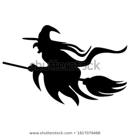 Bruxa vassoura voador isolado halloween sorrir Foto stock © popaukropa