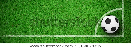 Digitally generated white leather football  against close up view of astro turf Stock photo © wavebreak_media