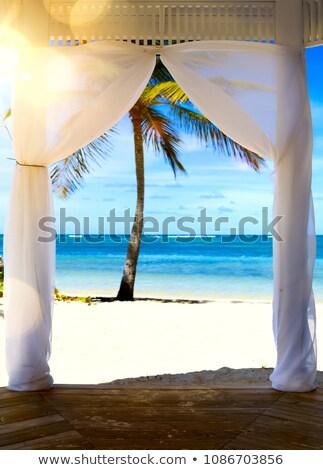 Művészet gyönyörű napfelkelte trópusi tengerpart esküvői ceremónia sátor Stock fotó © Konstanttin