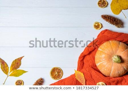 Herbst Laub Kürbis leer Tafel Textur Stock foto © Zerbor