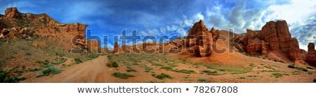 描いた 砂漠 パノラマ 森林 公園 オフ ストックフォト © fotogal