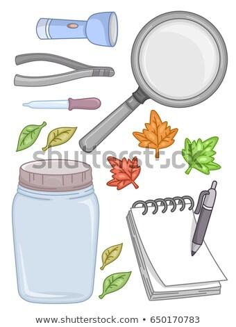 Leaf Outdoor Experiment Elements Illustration Stock photo © lenm