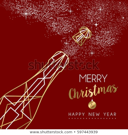 Merry christmas happy new year outline bottle deco Stock photo © cienpies