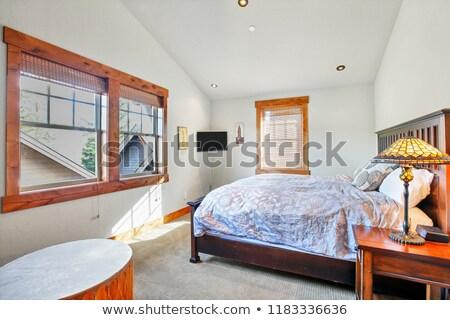 Licht slaapkamer witte muren plafond Blauw Stockfoto © iriana88w