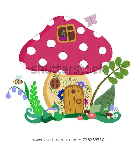 Seta venenosa casa puerta Windows ilustración diseno Foto stock © colematt