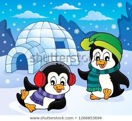 иглу искусства зима птиц животные Hat Сток-фото © clairev