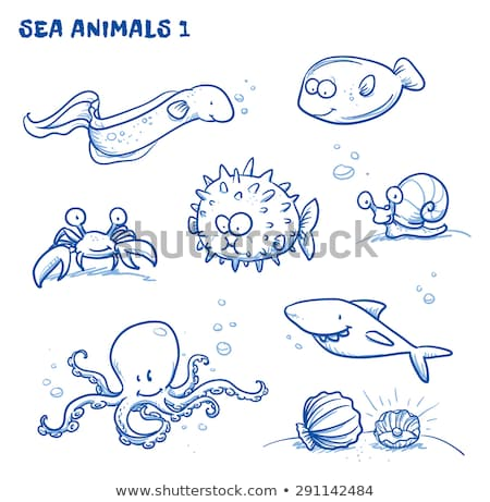 eel and octopus hand drawn vector illustration stock photo © robuart