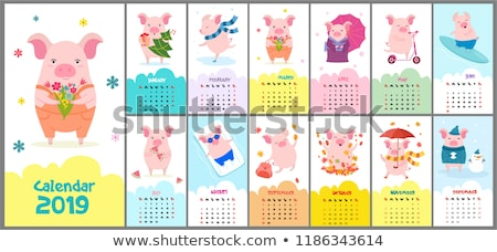 2019 year calendar with cartoon stylized pigs Stock photo © SelenaMay