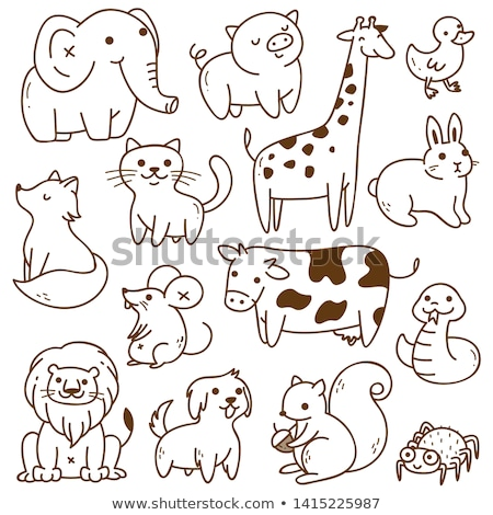 animal doodle outline for squirrel stock photo © colematt