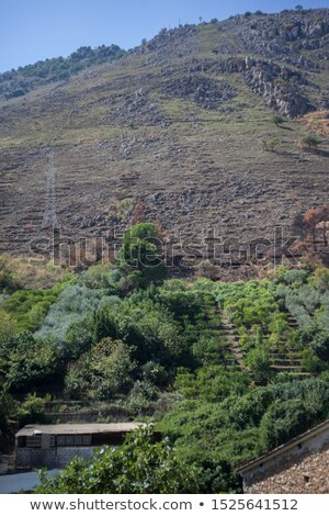 panoramic view with farmfields countries wide river on a backg stock photo © artjazz