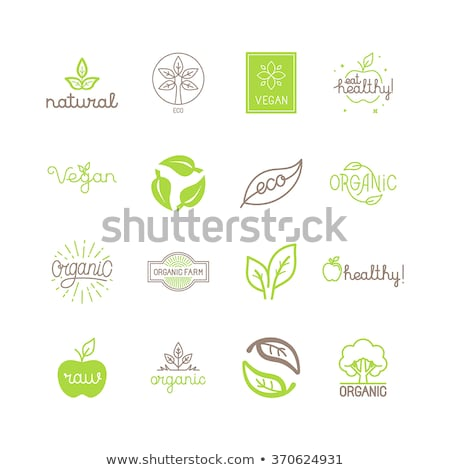 Set of different vegetarian and vegan  products. Stock photo © furmanphoto