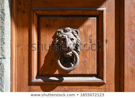 aslan · kapı · Metal · sanat · mimari - stok fotoğraf © marylooo