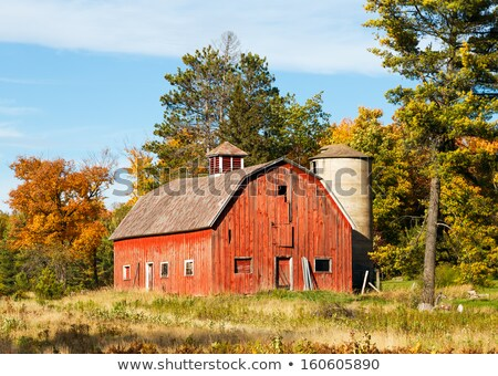 Silo and barn painted in red color Stock photo © colematt
