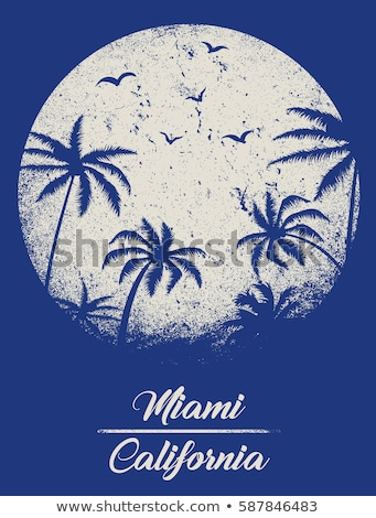 summer emblem with palms design element for logo label sign poster t shirt stock photo © masay256