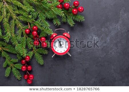 Fekete ébresztőóra fenyőfa ág piros karácsony Stock fotó © Illia