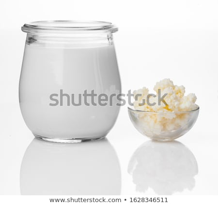 Milk kefir grains in spoon. Yeast bacterial fermentation starter Stock photo © joannawnuk