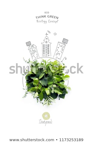 concept of eco-friendly, new leaf in hand. Stock photo © Ansonstock