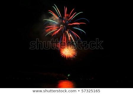 2010 фейерверк черный Новый год карт Сток-фото © orson