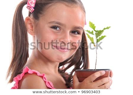 Giovane ragazza rovere alberello ragazza albero natura Foto d'archivio © photography33