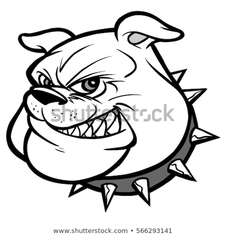 Mascot Bulldog  with Collar Vector Illustration stock photo © chromaco