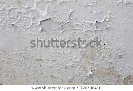 flaky wall Stock photo © Aliftin