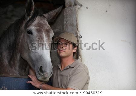 lovas · ló · istálló · nő · fiatal · lovak - stock fotó © photography33