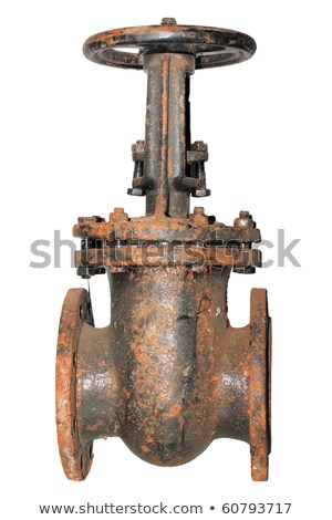 Single very rusted valve of outdoor pipeline Stock photo © boroda